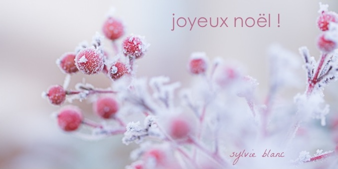 noel ©sb 2013
